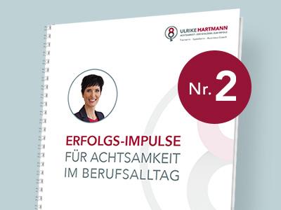 Cover-Bild Erfolgs-Impulse Teil 2