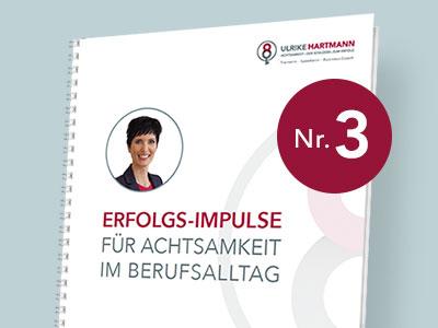 Cover-Bild Erfolgs-Impulse Teil 3